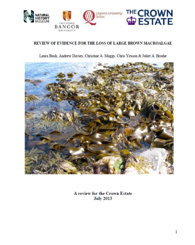 Bush et al. (2013) Front page