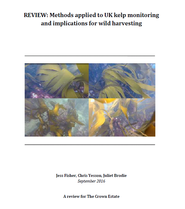 Fisher et al (2016) Review of Kelp monitoring
